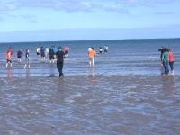 Skerries Beach_1